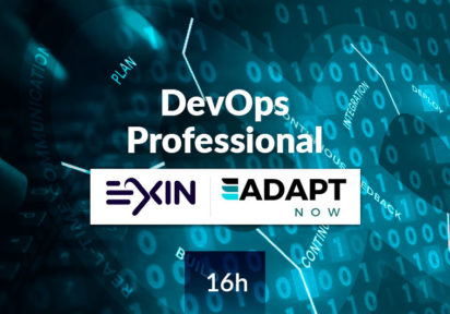 DevOps Professional